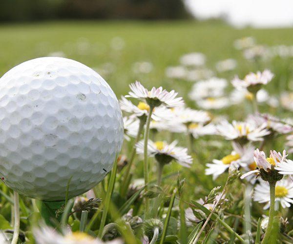 cours-de-golf
