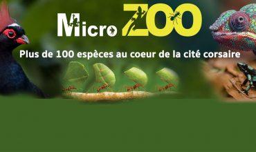 Micro-Zoo